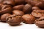 capsule caffè compostabili